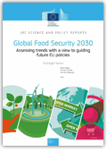 Global food security 2030