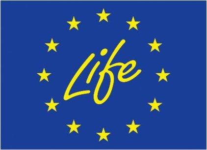 Imagen: http://publications.europa.eu/resource/uriserv/OJ.L_.2021.172.01.0053.01.SPA.xhtml.L_2021172ES.01007802.tif.jpg