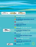 Publication document thumbnail